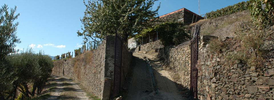 Quinta da Serpe